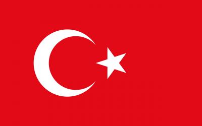 Se busca Medio Centro Ofensivo Super Liga Turka